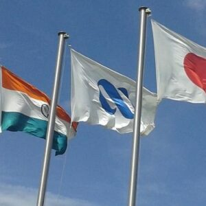 Giant International Country Flags